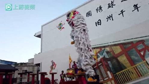 百家媒体聚焦靖西(二) | 旧州古城 南狮劲舞