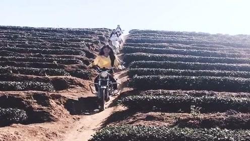 村里的女司机们下班回家吃饭了,骑着摩托车直接从山上往下冲,真狠!
