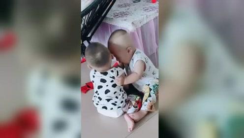 """双胞胎互抢东西笑喷网友,""""拳脚相向""""还用上""""铁头功""""必杀技"""