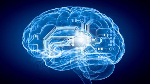 """真正的超强大脑要来了!科学家开展""""人类大脑计划"""" 按人脑一比一打造电脑"""