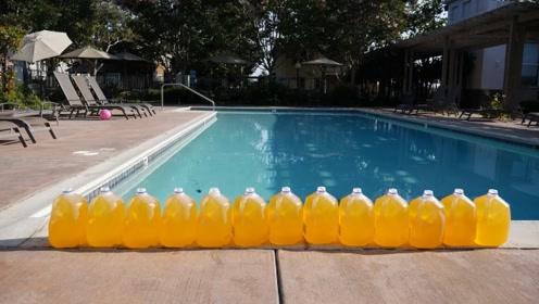一个公共泳池中含有几公斤尿液?看到实验数据还敢游泳吗?