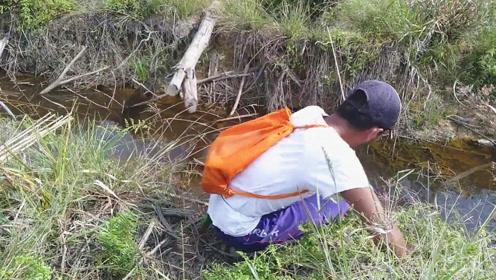 废弃水渠边大叔插杆钓鱼,没想到钓上的大货还真是令人嘴馋