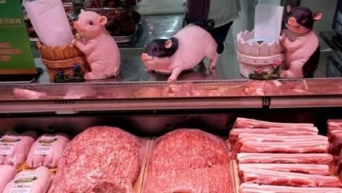 猪价开始下跌,我国加大进口猪肉力度,回到正常价位只是时间问题?