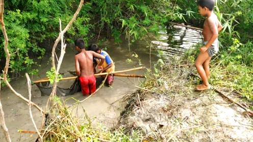 印度村口的一条小水沟,小孩子拿着网就下水捞鱼,果然有大货