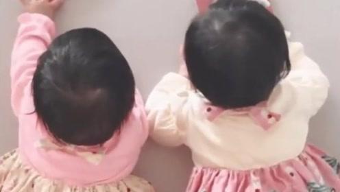 有种遗传叫张杰谢娜的双胞胎,当看到照片后,网友:老天是公平的