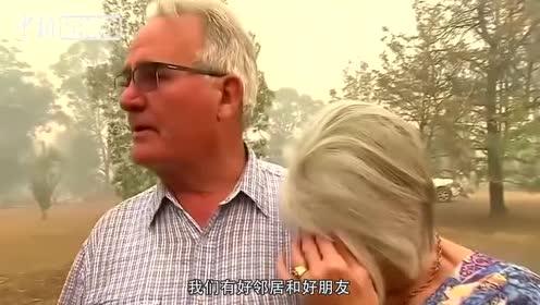 """澳新南威尔士州遭遇""""灾难级""""林火进入紧急状态"""