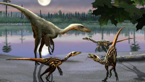 如果6500万年前恐龙没有毁灭,或许已经进化出智慧