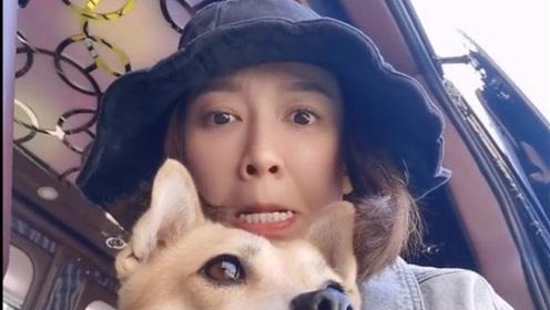 陈乔恩与宠物狗玩自拍,模仿来福的表情,学得真像