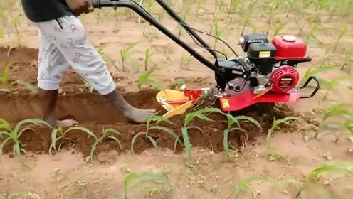 畅销全球的日本小农机,给玉米培土操作,太轻巧灵便了!