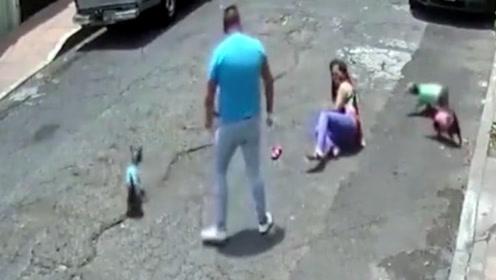 """男子""""爱狗""""如命,男子竟直接对妹子下狠手!"""
