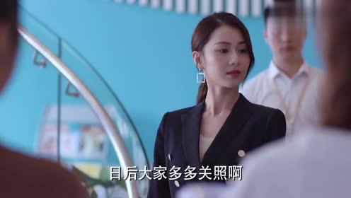 逆流而上:美女老板给大家介绍杨光,给其长脸,怎料被杨光下面子