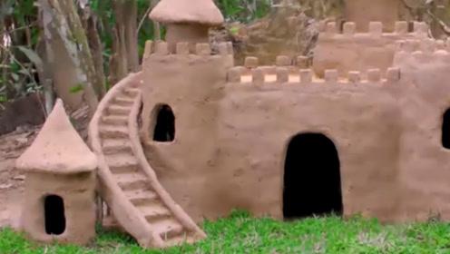 外国小伙善心大发,为流浪狗建城堡,网友:太奢侈了
