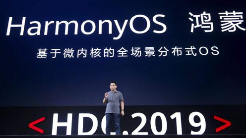 华为高管:6 至 9 个月内决定,是否将鸿蒙 OS 带到智能手机上!