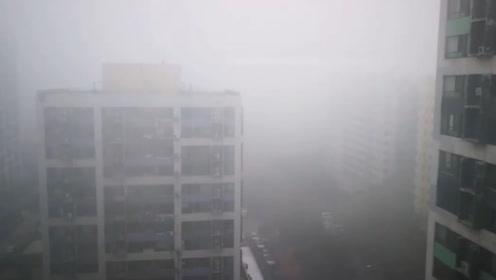大雾橙色预警!济南迎来首场冬雾 局地能见度不足50米