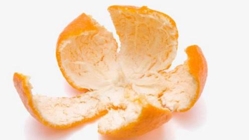一片小小的橘皮,没想到作用这么大,现在知道还不晚