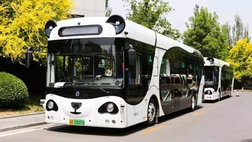 师傅,我想上熊猫智能公交车