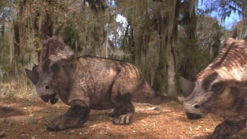 智力不够体型来凑的肿鼻龙!依靠龙多势众对战掠食者!