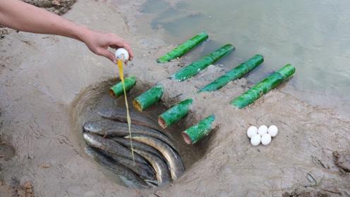 农村小伙挖陷阱捕鱼,敲入生鸡蛋,第二天竟钻进这么多野货
