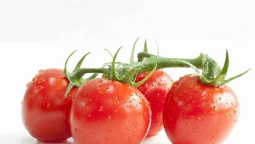 药补不如食补!每天吃点西红柿祛湿消肿滋补安神