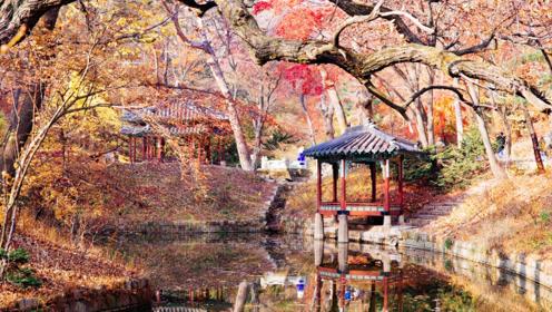 看比紫禁城小一半的朝鲜王宫,体验韩国一把辛酸泪