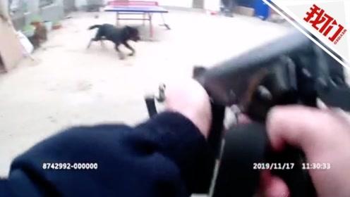 惊险!恶犬疯狂扑人民警连开3枪 中枪后恶犬狂叫着冲向民警