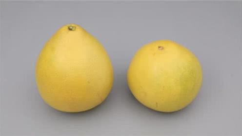 买柚子到底选尖的还是圆的?果农:学会这2点,保证个个皮薄味甜