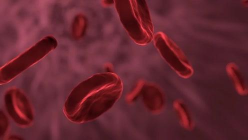 【生物大师 高中】细胞膜的探索历程——医学之花
