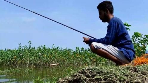 真的是羡慕了,他们随便弄的鱼饵,都能钓到大鱼