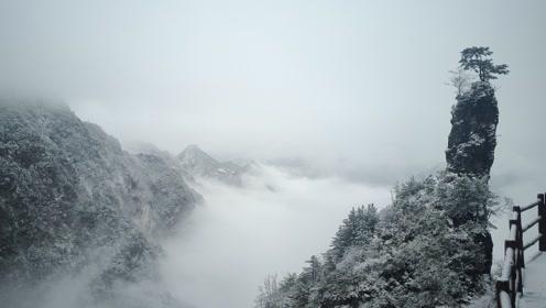 四川万源八台山迎来今冬首场大雪,创近年来雪量纪录