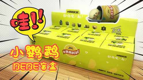 小鹦鹉BEBE盲盒,又萌又有趣,一次拆一整盒
