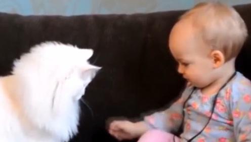 宝宝想摸猫咪的脸,下一秒猫咪的反应,承包了我一年的笑点