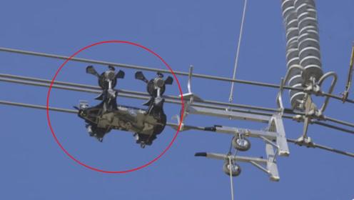 """高压电线上的维修机器人,靠4个""""螺旋桨""""爬行,动作比蜘蛛灵活"""