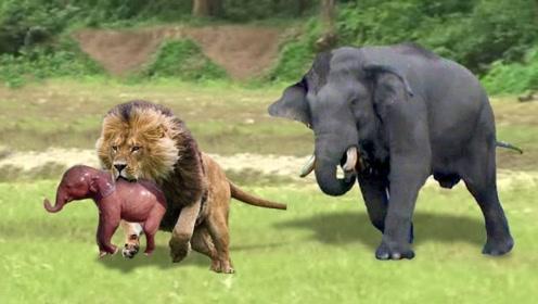 大象救子心切,鼻子一甩霸气十足,这下狮子算是失策了!