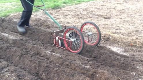 """农民大叔发明""""圆盘""""犁地机,一天轻松犁5亩地,20元造一台"""