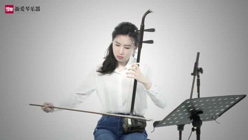新爱琴从零开始学二胡:第34课《汉宫秋月》讲解