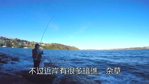 矶钓,还在做准备工作,钓友就中40几厘米的大鱼