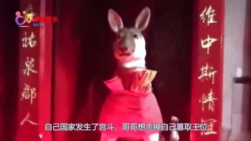 中国最奇葩的一座寺庙,不供佛像供条狗,香火百年不断有求必灵