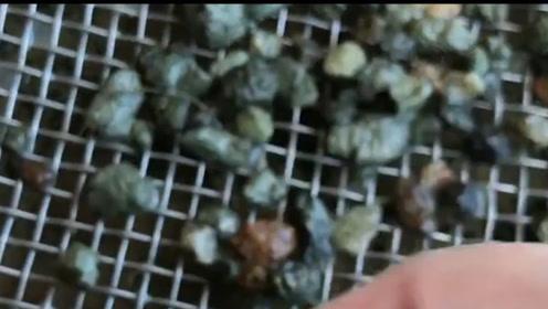 全球唯一一个钻石公园,门票只要6元,挖到钻石能直接拿走
