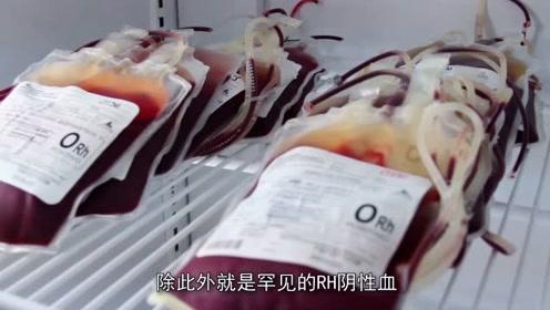 真的万能的血型,在中国被发现,比O型血还管用,另一种还能治艾滋!
