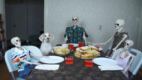 狗狗发现主人全部变成了骷髅,竟吓的一动不动,画面太可爱了
