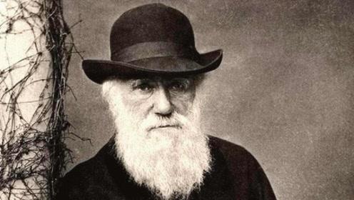 达尔文进化论存在疑点?这些进化问题,达尔文自己都搞不清楚!