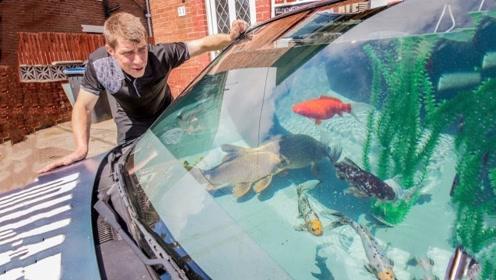 老外把汽车改成鱼缸?金鱼在车里自由自在,网友:有钱人真会玩!