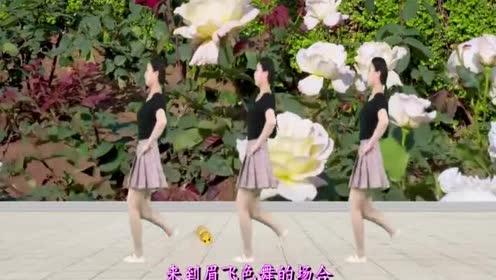 32步广场舞《眉飞色舞》流行舞曲!弹跳健身!燃脂减肥又健康
