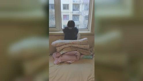3岁萌娃趴窗台1小时纹丝不动 背后真相令人哭笑不得