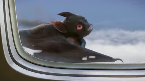 精灵旅社:德古拉的飞行速度竟追上了飞机?莫名好心疼他
