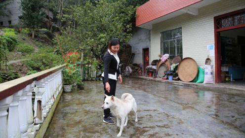 49岁山村农妇网上帮留守老人卖山货,大山里的土味壮大了朋友圈