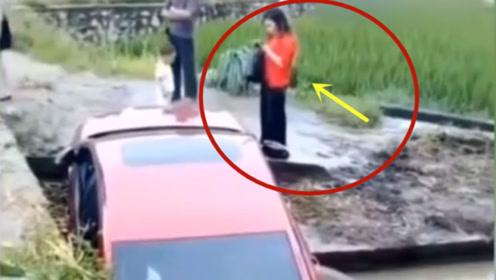 生猛的女司机,要不是视频谁会相信这头牛的经历!太难了