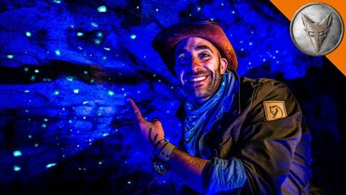 """这个银河般的""""萤火虫洞"""",真是美到让人窒息!"""