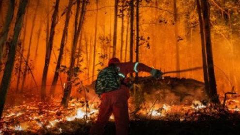 佛山山火原因查明:系钻探工程引发,10人被刑拘