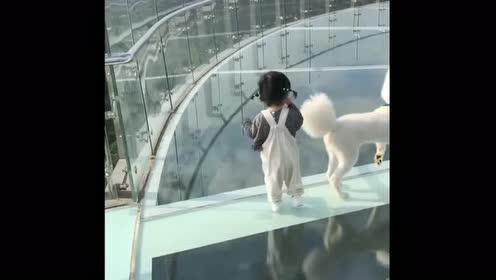 第一次带小情人走玻璃栈道,没想到竟是这场景,我还真小瞧她了!